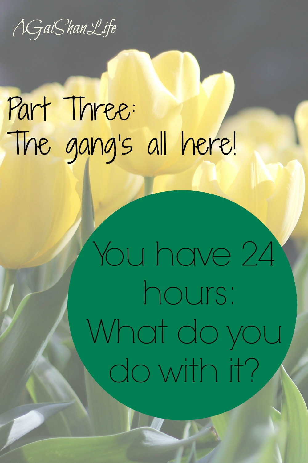 24 hours, Part 3: coparenting, petri dishes, and self-care