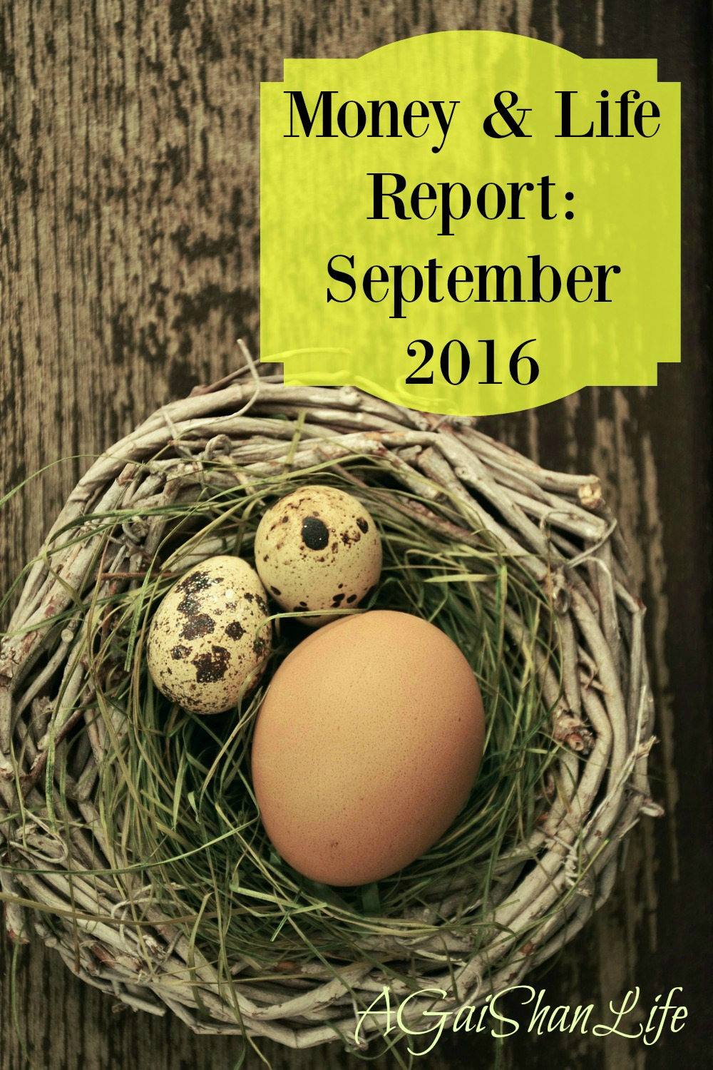 Money and Life Report: September 2016
