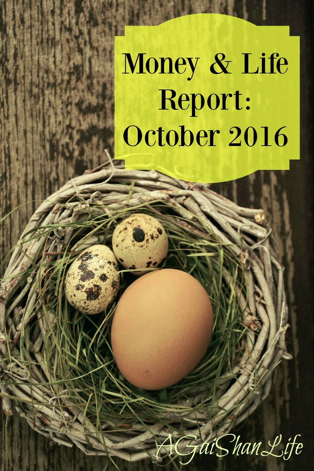 Money and Life Report: October 2016
