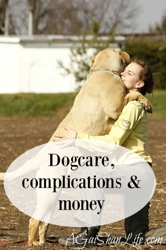 Dogcare and when I can't throw money at our problems