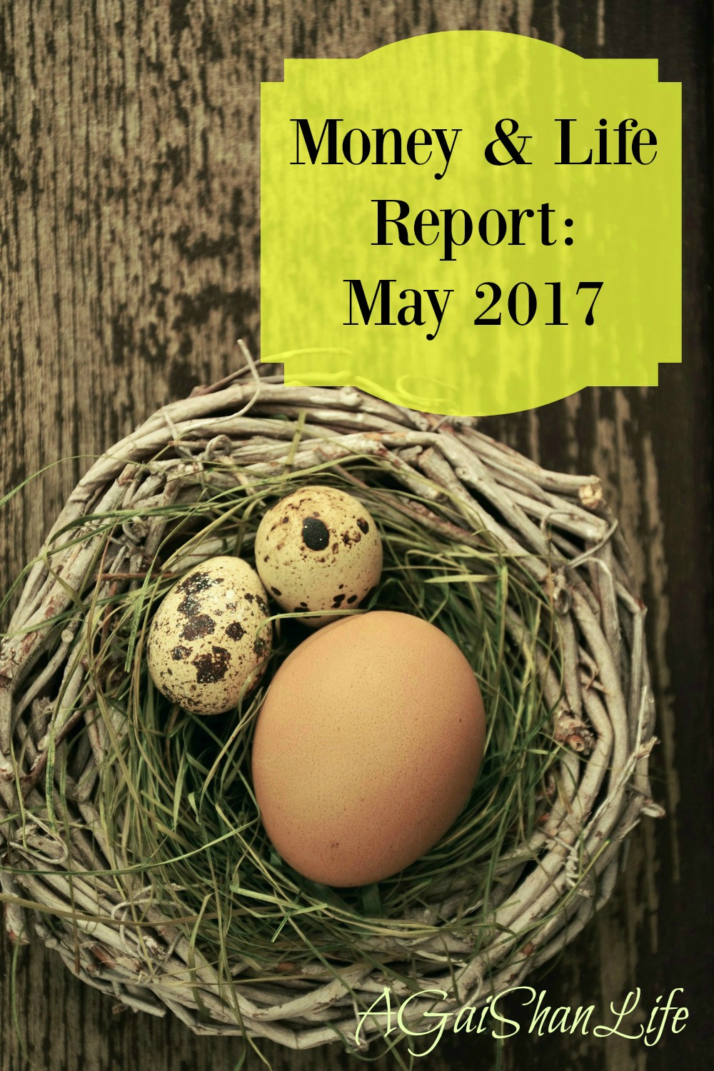 Money and Life Report: May 2017
