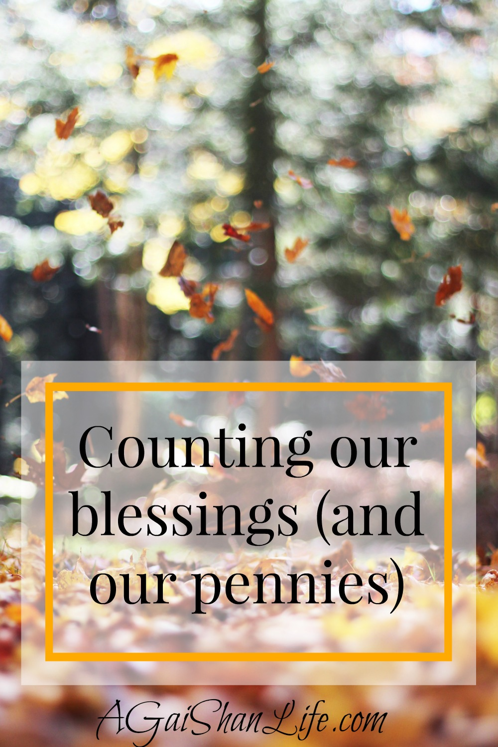 Counting our blessings and taking the long view